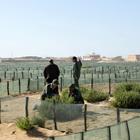 Desertification (Photo Essay)