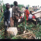 Getty Images - 1994: Rwanda