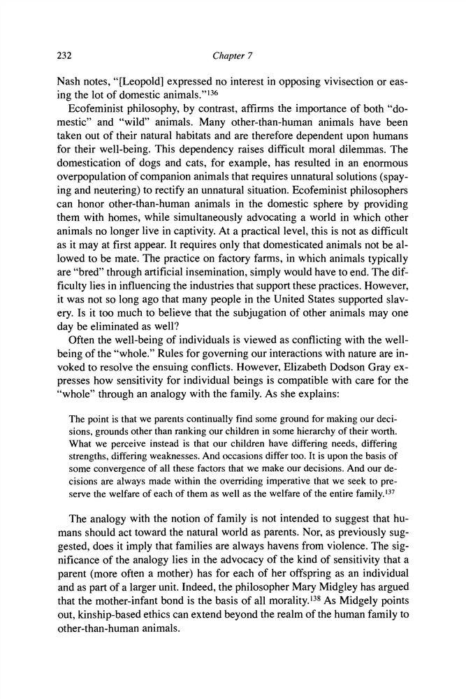 Environmental ethics essay outline